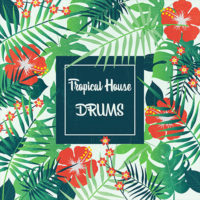 Tropical House Drums by The Audio Bar on Bantana Audio