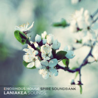 Enormous House Spire Soundbank by Laniakea Sounds on Bantana Audio