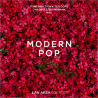 Modern Pop by Laniakea Sounds on Bantana Audio