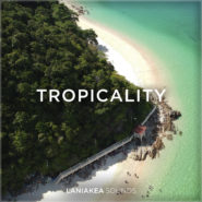 Tropical House Samples & Loops on Bantana Audio