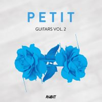 petit biscuit guitar loops on Bantana Audio