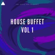 House Buffet Vol. 1 by The Audio Bar on Bantana Audio