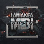 Laniakea MIDI Collection by Laniakea Sounds on Bantana Audio