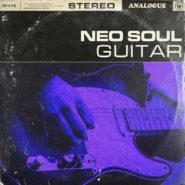 Neo Soul Guitars by Touch Loops on Bantana Audio